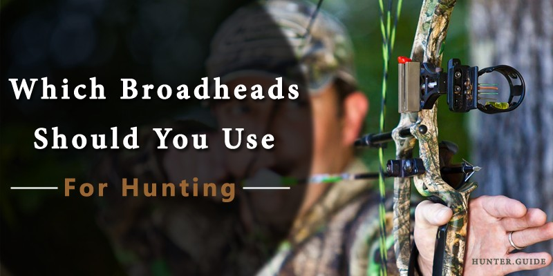 Which Broadheads Should You Use